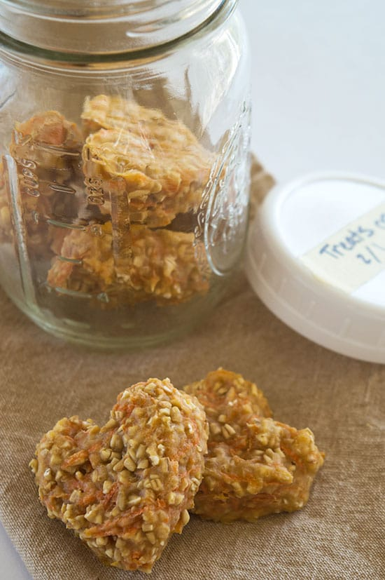 Carrot Oat Applesauce Treats - Quick and easy four-ingredient treats for dogs and horses. From BakingMischief.com
