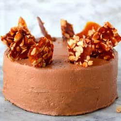 The Flavor Bender's Chocolate & Peanut Cake With Caramel Peanut Butter Nougat Filling