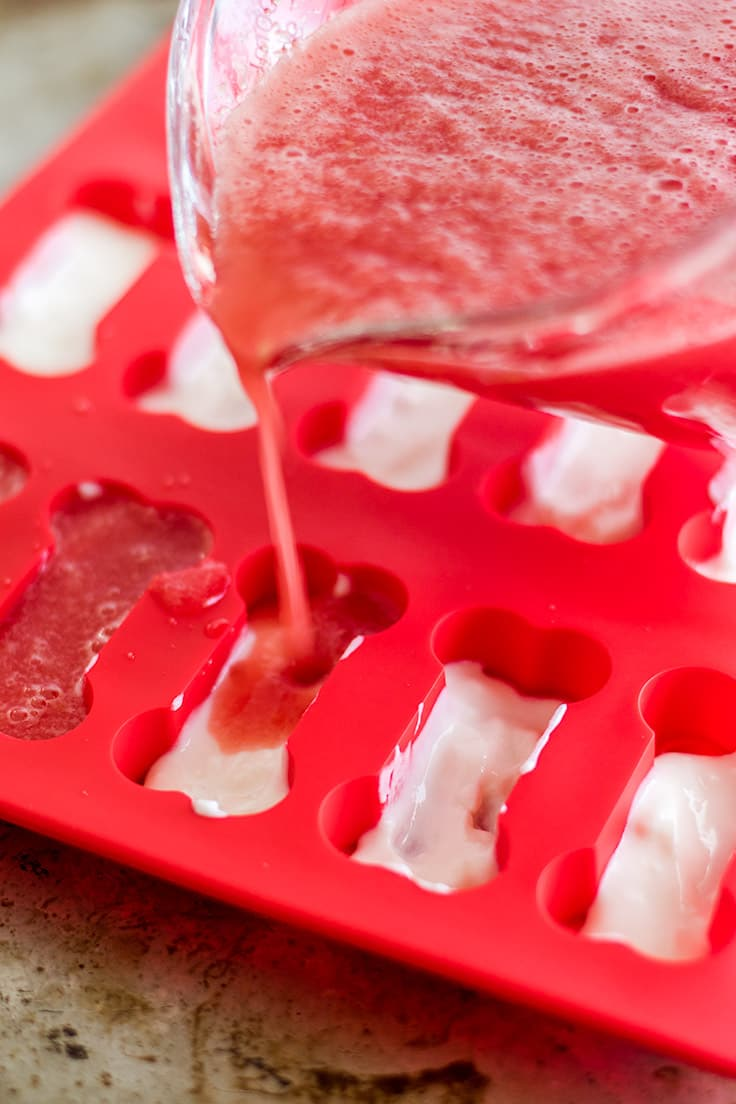 These Frozen Dog Treats are just those two ingredients: pureed watermelon and yogurt.